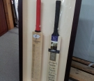 double-cricket-bats