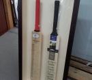 double-cricket-bats
